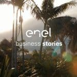 Enel Energia - Business Stories Radice Pura